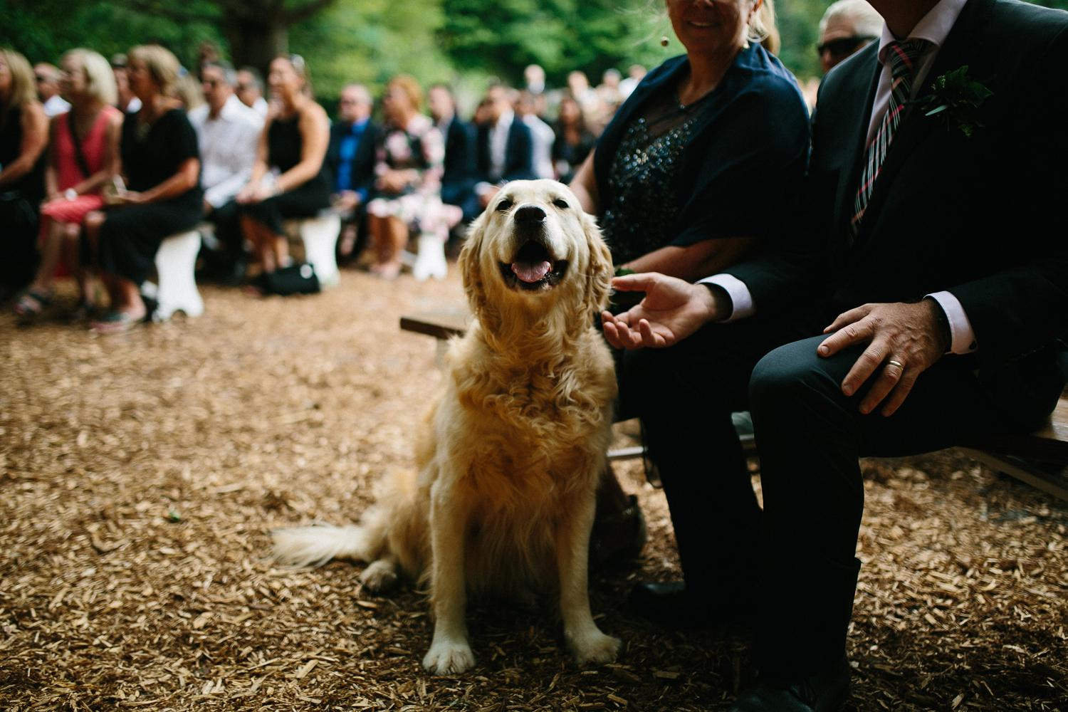 Bailey___Joseph_Wedding_179.jpg