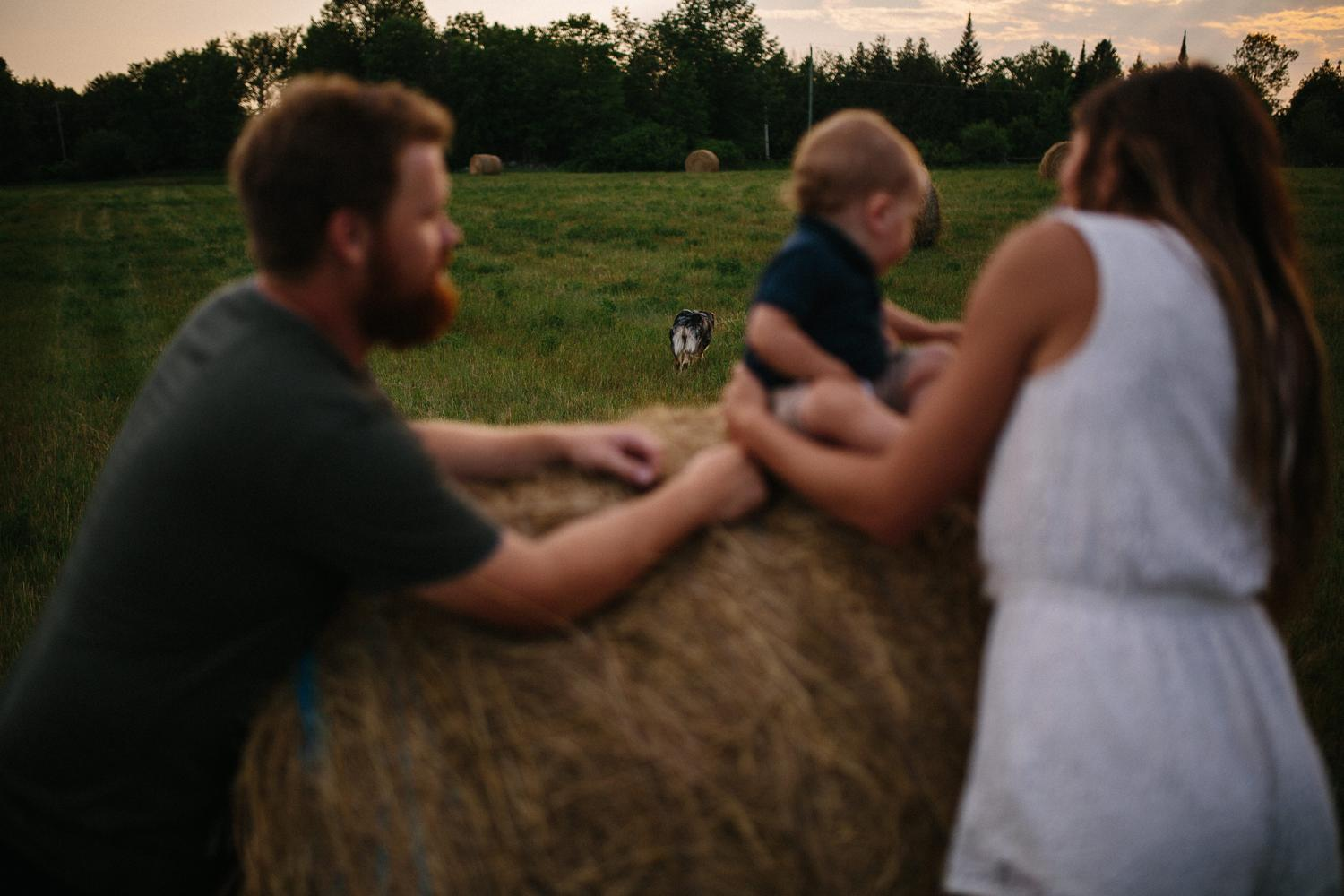 lanark highlands farm family photo session - kerry ford photography-077.jpg